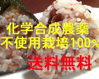 送料無料メール便 (十六穀米 100g 十穀米 100g 五穀米 100g)味比べセット …...:slow-foods:10000569