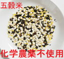 送料無料 安心認証済み原料100% ●こだわり五穀米 業務用お得サイズ1.8kg