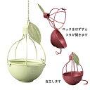 【送料無料】リンゴ風吊り下げポット 2個セット グリーン【代引き不可】