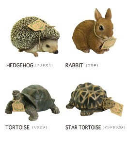 PETBANK/HEDGEHOG/RABBIT/TORTOISE/GRASSFROG/STARTORTOISE/SQUIRREL