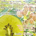 【送料無料】愛媛産 訳ありゴールドキウイフルーツ10kg【ご家庭用・サイズ不揃い】