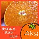 【ご家庭用・大小不揃い】愛媛県 訳ありせとか 4kg