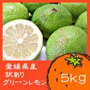 【2014年度10月上旬より発送!】愛媛県産 訳ありグリーンレモン 5kg