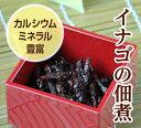 イナゴの佃煮 500gいなご・蝗【RCP】