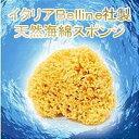 【送料無料】【代引料無料】天然海綿ハニコム種(16cm)