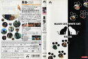 【店内ポイント最大10倍】[DVD洋]黒猫 白猫 [字幕]/中古DVD【中古】(AN-SH201601)(AN-SH201609)【期間限定★2/17-20時〜...