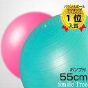 楽天ランキング1位W入賞 バランスボール アンチバースト ノンバースト 55cm 送料無料 フットポ...
