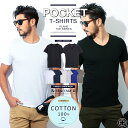 Tシャツ カットソー ファッション カジュアル