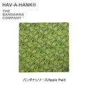 HAVE A HANK/ハバハンクバンダナハンカチ