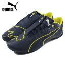 Puma0622