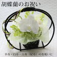 卒寿祝い・白寿祝い・百寿祝い(紀寿祝い)におすすめな白い花の和風プリザーブドフラワーアレンジ 胡蝶蘭のお祝い ホワイト