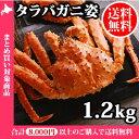 タラバ蟹姿 1.2kg /かに/カニ/蟹/蟹姿/たらばがに/たらば蟹/タラバガニ/1.2キロ/送料無料/すがた/ギフト