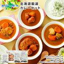 北海道スープカレー20食セット 北国チキンレッグ×5食 南家...
