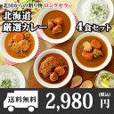 北海道スープカレー4食セット(北国チキンレッグ/南家/天竺/ココナッツ)業務用パッケージ/カレー セ