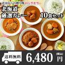 北海道スープカレー10食セット(北国チキンレッグ×2食