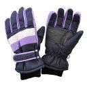 日栄産業(ニチエイサンギョウ) ジュニア スキーグローブ ボードグローブ 手袋 SP-042 PURPLE(パープル)