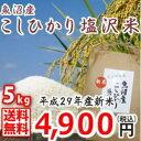 魚沼産白米【平成29年新米】特A地区【特A米 5kg】南魚沼...