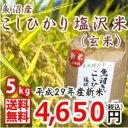 【平成29年新米】 魚沼産玄米 【特A米 5kg】南魚沼産コ...