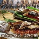 福井名物「浜焼き鯖」ソウルフード丸焼き