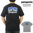 ショッピングシャツ パタゴニア Patagonia メンズ Fitz Roy Horizons Tシャツプリント 半袖 Tシャツ トップス カットソー 丸襟 クルーネックおしゃれ ブランド 厚手 大きいサイズ【正規品】【送料無料】【ネコポス(1点のみ)】