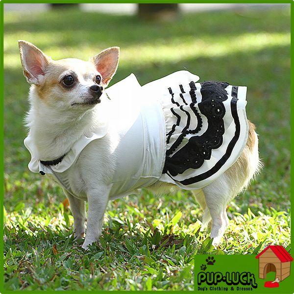 ロイヤルホワイトワンピースドッグウェアフォーマルドレスペットウェア/ドッグウエア/小型犬用品/dog