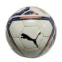 プーマ PUMA チームファイナル 21 フットサル 3号球 ホワイト 小学生 フットサルボール 083434 01