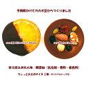 【オリジナルバッグ付】/カカオ豆からつくったチョコレート2種セット/カカオ72%ビターオランジェット/カカオ52%ミルクマンディアン/ちょっと大きめ28g/乳化剤・香料等無添加/甘さ控め大人味/ホワイトデーにも