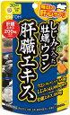 【メール便 送料無料】しじみの入った牡蠣ウコン肝臓エキス 1...