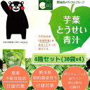 【送料無料】芋葉とうせい青汁 4箱セット<1箱(30袋):約15〜30日分>青汁【05P24Dec15】