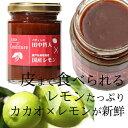 【コンフィチュール チョコレートレモン 160g】【12月6日号anan12月1月号東京ウォーカーに...