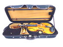 "Viola case(ビオラケース)16""(外装:ブラック)"