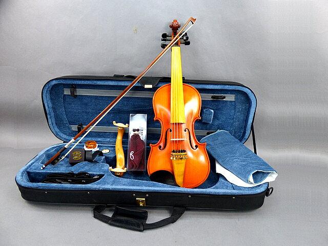6弦 バイオリン 03