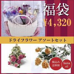 【即納】福袋 ドライフラワー 花材 詰め合わせ 10個 <strong>ハーバリウム</strong>