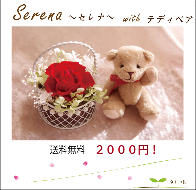 【即納】 プリザーブドフラワー ギフト セレナ 結婚式 祝電 電報 プリザーブドフラワー...:solar-gift:10000283
