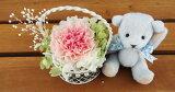 結婚祝い 誕生日プレゼント テディベア ブルー と セレナ カーネーション2色ピンク プリザーブドフラワー プリザ ブリザードフラワー ブリザード フラワー ブリザーブドフラワー