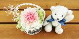 結婚祝い 誕生日プレゼント テディベア ホワイト と セレナ カーネーション 2色ピンク プリザーブドフラワー プリザ ブリザードフラワー ブリザード フラワー ブリザーブドフラワ
