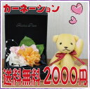 2012  &amp;amp; precious carnation free shipping carnation flower present wedding present baby gift  present wedding ceremony congratulatory telegram telegrams [_ Kanto tomorrow for comfort]