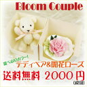 Percent special plan bloom couple bloomcouple  free shipping gift early in point 10 times Mother's Day