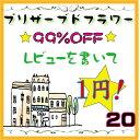 【20】レビューで1円 ポッキリ お試しセット 2012 花材 福袋 通販限定 3000円以上 送料無料