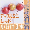 【即納】 アップルミニ 25mm【 レッド小分け 3本入】 大地農園