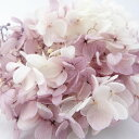 【即納】 プリザーブドフラワー 花材 ソフトピラミッドアジサイ スフレ【パープルホワイト 小分け】大地農園