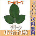 【即納】 プリザーブドフラワー 花材 ローズリーフ【グリーン 小分け 3枚】大地農園