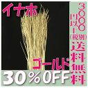 【即納】 プリザーブドフラワー 花材 30%OFF 稲穂 イナホ【ゴールド 袋 約50本入】大地農園