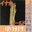 【即納】 稲穂 イナホ【ゴールド 小分け 約10本入】 大地農園
