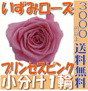 【即納】 プリザーブドフラワー 花材 いずみ ローズ 【プリンセスピンク】 1輪 大地農園