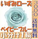 【即納】 プリザーブドフラワー 花材 いずみ ローズ 【ベビーブルー】 1輪 大地農園
