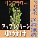 【即納】 リンフラワー【アップルグリーン 小分け】 大地農園
