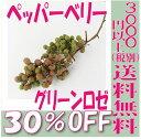【即納】 プリザーブドフラワー 花材 30%OFF ペッパーベリー 【グリーンロゼ 箱 約55g入】 大地農園 実もの プリザービング