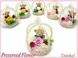 With clear case + leather plate with preserved bear free fragrance ♪ ♪ DAN-P049fs3gm