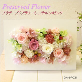 Preserved flower and stern * pink DAN-P031fs3gm